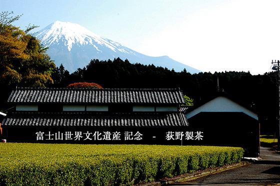 富士山世界文化遺産記念!煎茶100㌘(二番茶)お一人様一つプレゼント!!