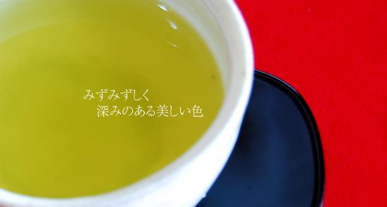 ふじのくに山のお茶100選 100銘茶コンテストの入賞茶 龍神茶健